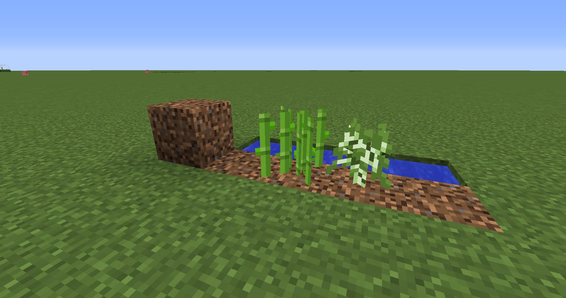 マインクラフト攻略 粗い土の使い方